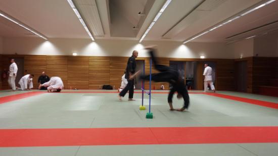 arts martiaux judo soufflenheim drusenheim 9140