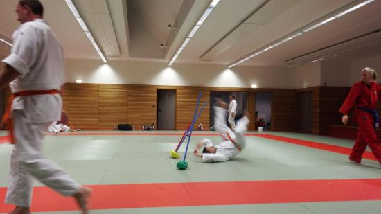 arts martiaux judo soufflenheim drusenheim 9144