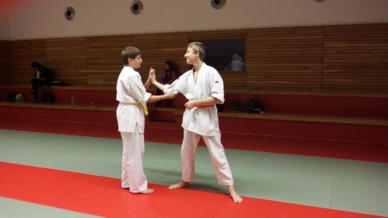 arts martiaux judo soufflenheim drusenheim9110