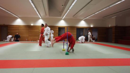 arts martiaux judo soufflenheim drusenheim9142