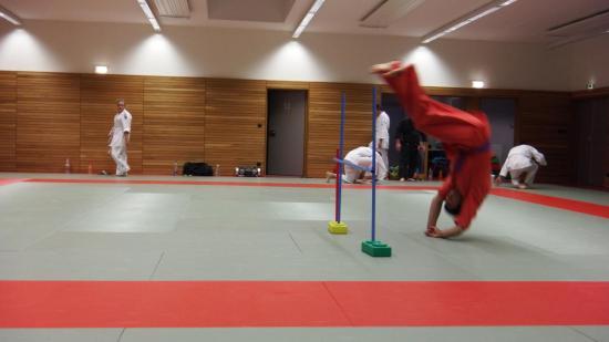 arts martiaux judo soufflenheim drusenheim9147