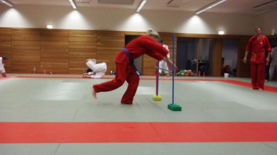 arts martiaux judo soufflenheim drusenheim9152