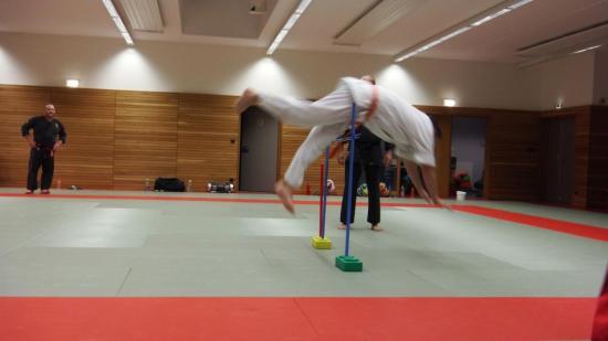arts martiaux judo soufflenheim drusenheim9161
