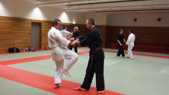 arts martiaux judo soufflenheim drusenheim9167