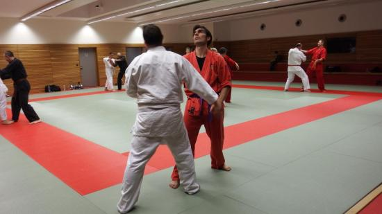arts martiaux judo soufflenheim drusenheim9168