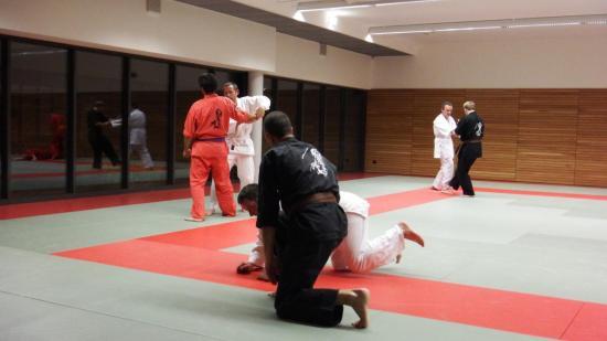 arts martiaux judo soufflenheim drusenheim9172