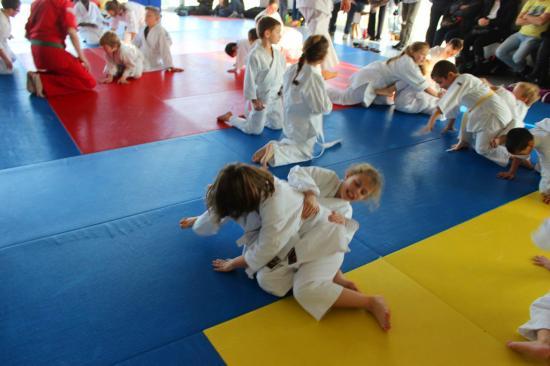 Arts martiaux Soufflenheim gosh judo28