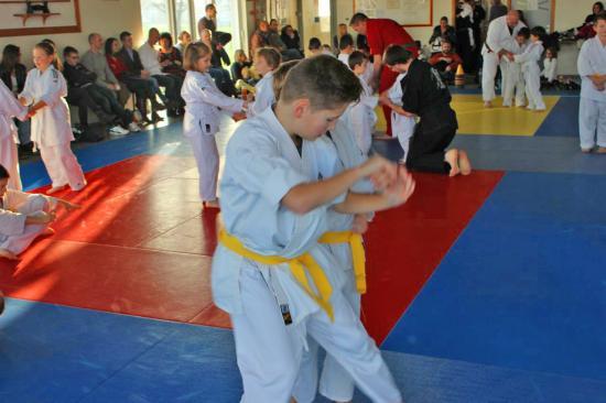 Arts martiaux Soufflenheim gosh judo48
