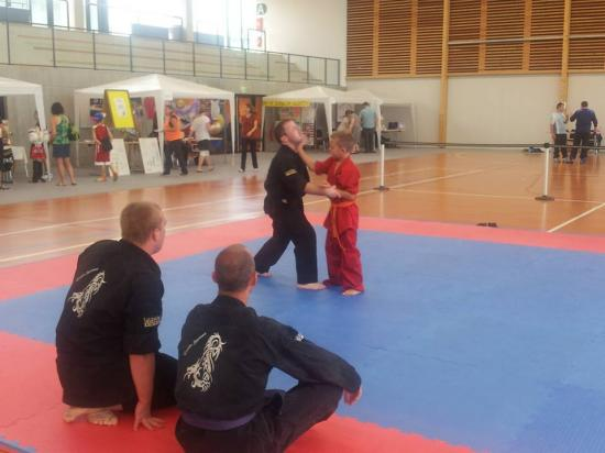 association sport arts martiaux soufflenheim 00