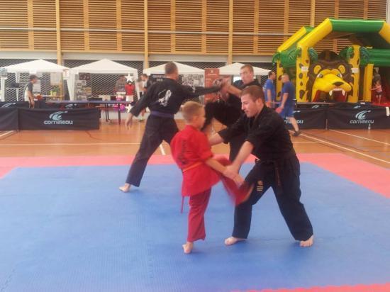 association sport arts martiaux soufflenheim 01