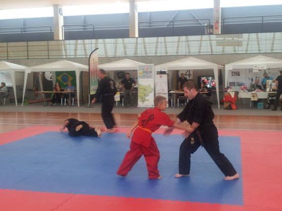 association sport arts martiaux soufflenheim 04