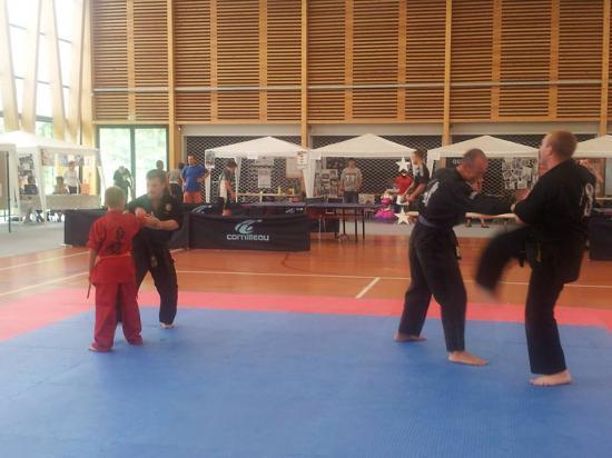 association sport arts martiaux soufflenheim 06