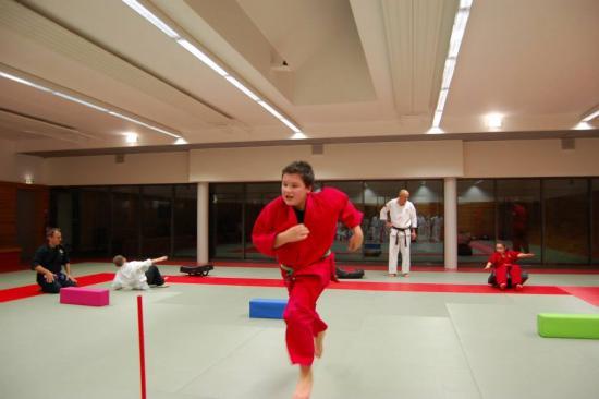 cours enfants sports arts martiaux 31