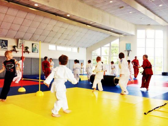 goshin judo aikido karate soufflenheim betschdorf 00