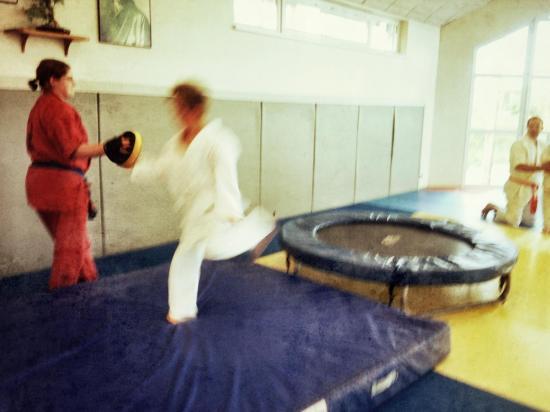 goshin judo aikido karate soufflenheim betschdorf 061