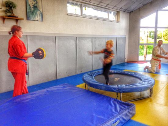 goshin judo aikido karate soufflenheim betschdorf 064
