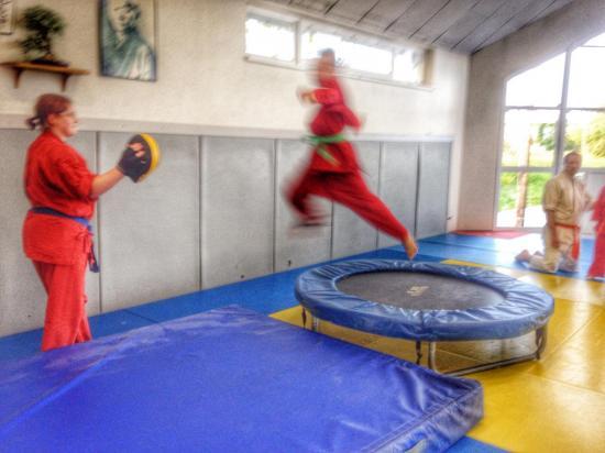 goshin judo aikido karate soufflenheim betschdorf 085