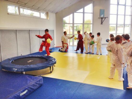 goshin judo aikido karate soufflenheim betschdorf 092