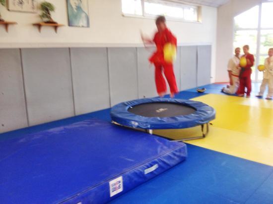 goshin judo aikido karate soufflenheim betschdorf 093