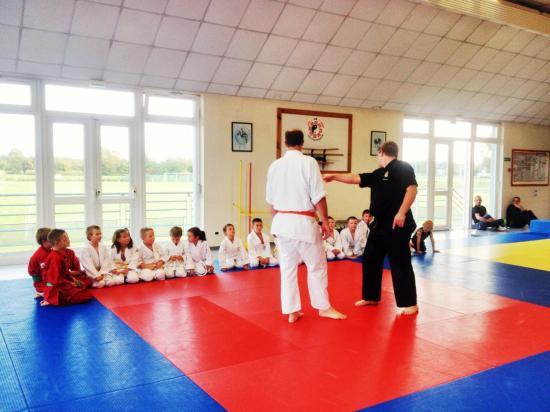 goshin judo aikido karate soufflenheim betschdorf 097