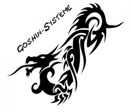 Logo de la section Goschin-Système