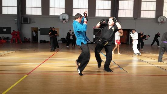 stage arts martiaux Soufflenheim à Annecy 10