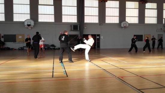 stage arts martiaux Soufflenheim à Annecy 15