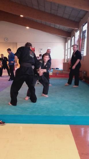 stage arts martiaux Soufflenheim à Annecy 19