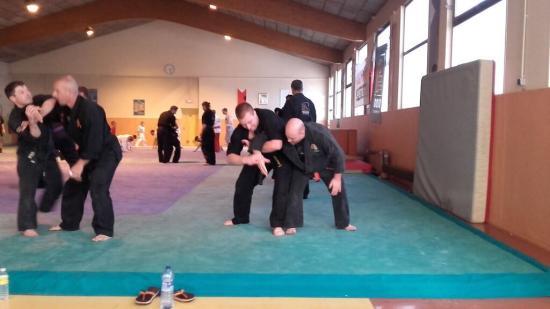 stage arts martiaux Soufflenheim à Annecy 21