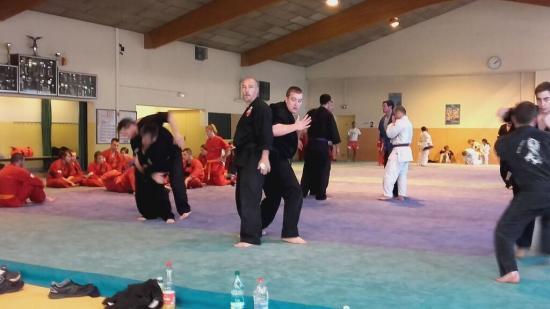 stage arts martiaux Soufflenheim à Annecy 22