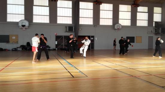stage arts martiaux Soufflenheim à Annecy 23