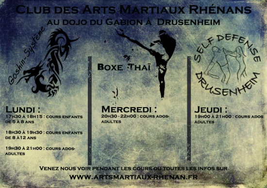 2014 2015 arts martiaux drusenheim horaires ju-jitsu