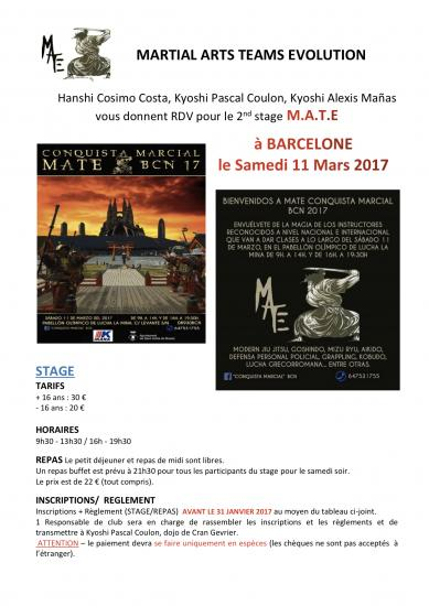 Stage d'arts martiaux mate 11 mars 2017