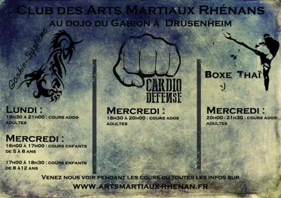 2016 2017arts martiaux drusenheim horaires 00