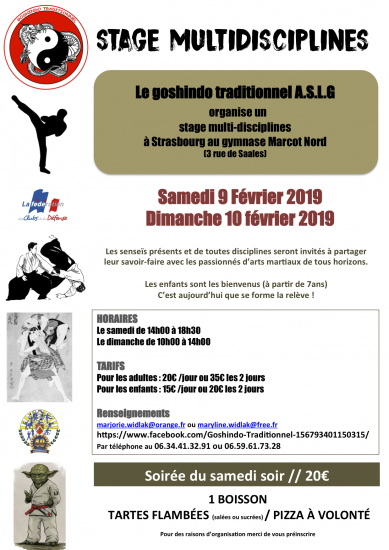 2019 02 08 09 stage multidisciplines Strasbourg