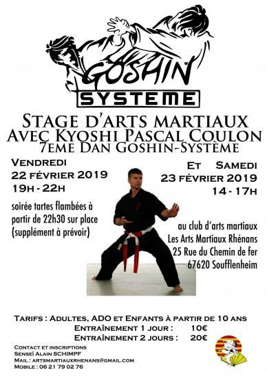 22 et 23 fevrier 2019 stage soufflenheim_Goshin-Systeme