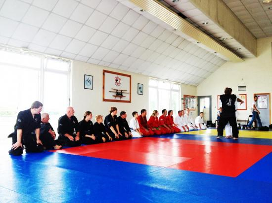 arts-martiaux-drusenheim-haguenau-soufflenheim-2209.jpg