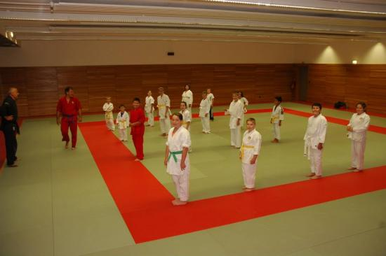Goshin melange judo karate a drusenheim soufflenheim