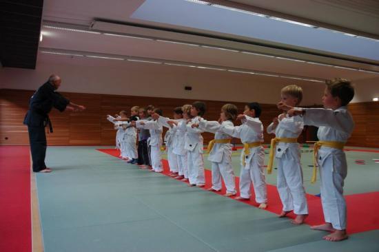 cours judo karate enfants drusenheim