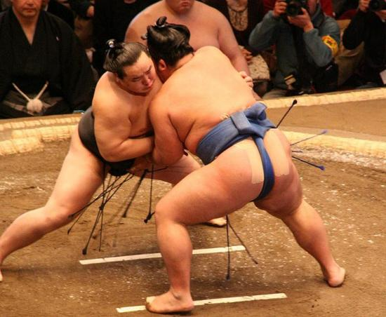 combat-de-sumotori-soufflenheim-drusenheim-haguenau-arts-martiaux.jpg