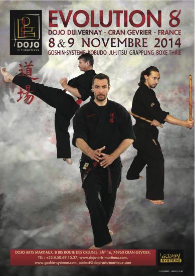 stage arts martiaux ju-jitsu Evolution 8