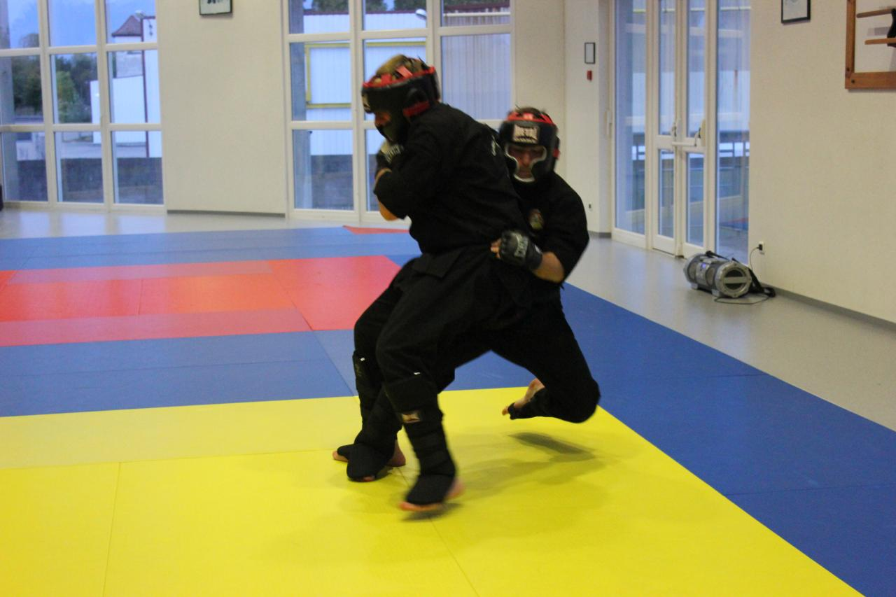 Sport de combat haguenau